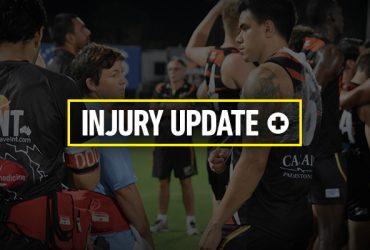 Round 11 Injury Update