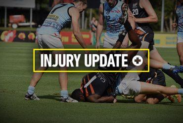 Round 16 Injury Update cover image