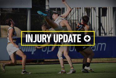 Round 17 Injury Update