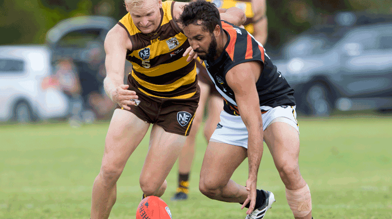 NEAFL Preview Round 10