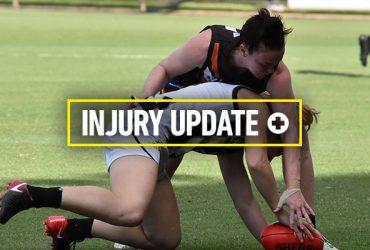 Injury update 2018