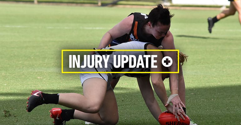 Injury update 2018